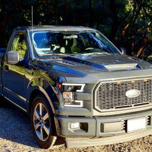 Ford F150 Fiberglass Hoods